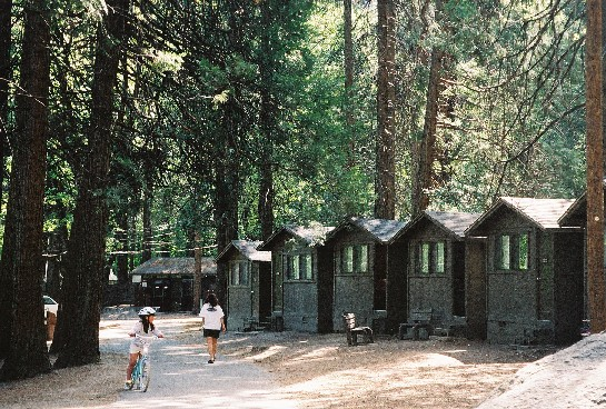 Cahome for Curry village cabins yosemite